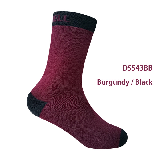DS543BB