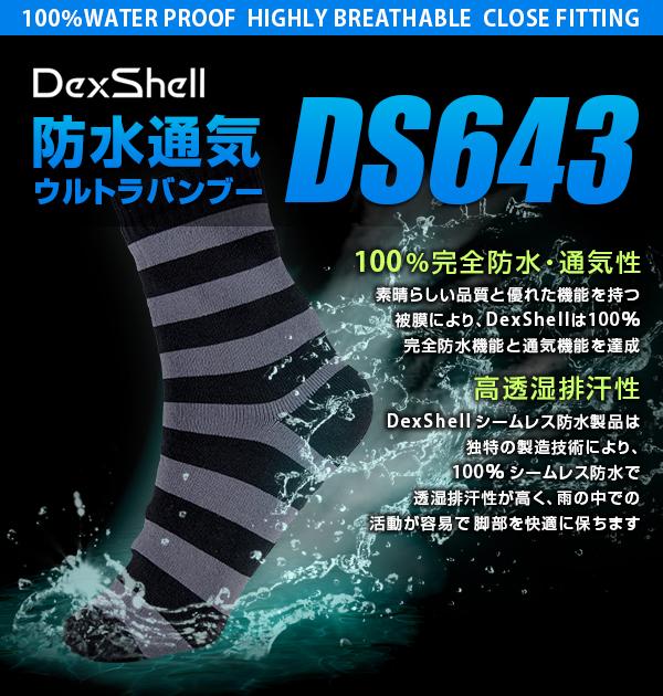 ds643-g